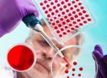 cellule-staminali-ematopoietiche